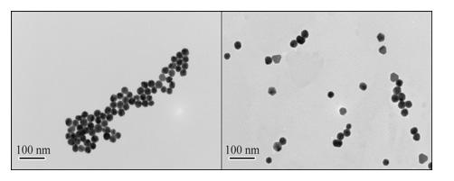高品質金ナノ粒子製品8. 金ナノ粒子 ‐ Cytodiagnostics 社製品の優位性