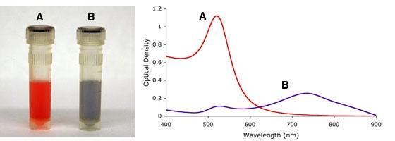 15nm の金ナノ粒子の外観とUV-Visスペクトル