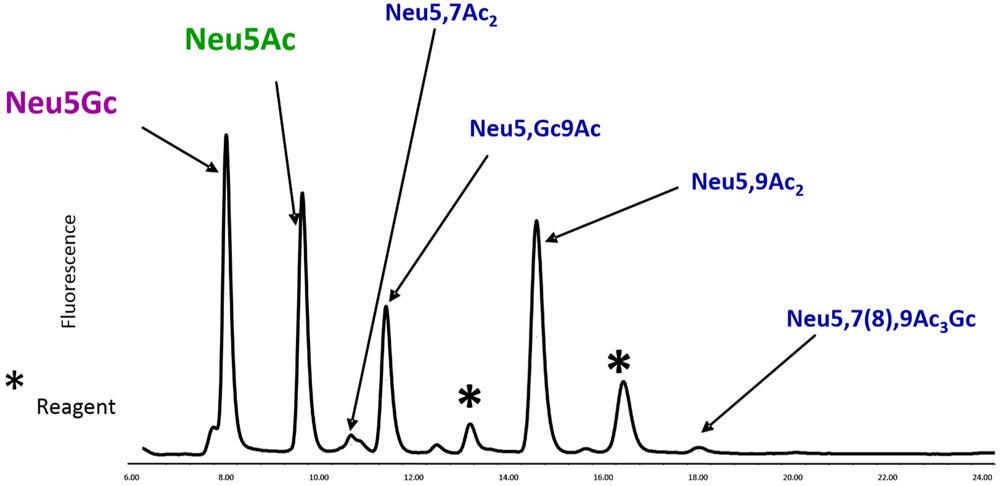 RP-HPLC によるDMBラベルされたシアル酸リファレンスパネルの分析