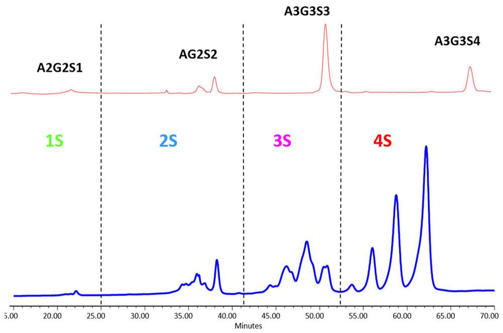Weak anion exchange (WAX)-HPLC、LudgerSep-C3カラムによる2AB標識グリカンの電荷による分離