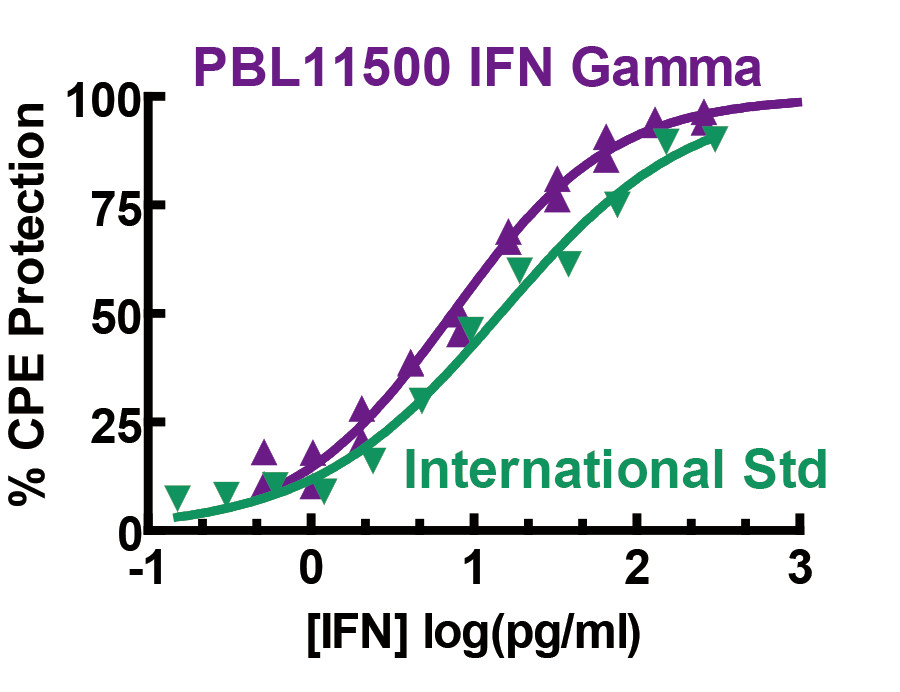ifn_gamma_products_pbl_02.png