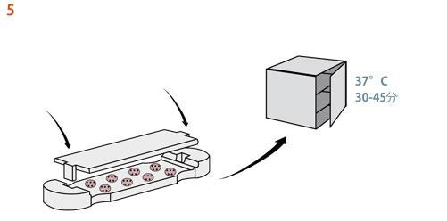 5. 注意しながらディスク・キャスターの蓋をし、細胞培養装置に入れ、37°Cで30〜45分間インキュベートする。