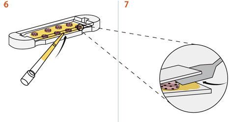 6. PBS(リン酸バッファー化生理食塩水)をゲル・ディスクの周りにピペットで入れ、QGel™ 3Dディスク・キャスターをゆっくりと開けます。