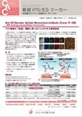 コスモ・バイオ 低硫酸化ケラタン硫酸抗体(R-10G)ちらし