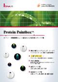 DNA2.0社 Protein Paintboxパンフレット 改訂版